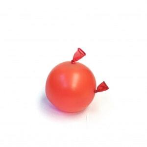Ballons2008_20