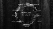 larynx_intro