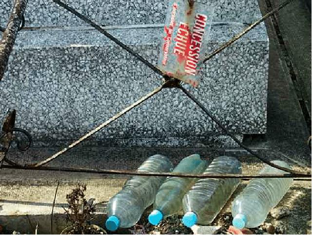 L'eau de vie